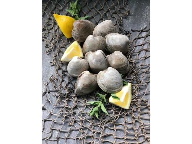 Littleneck Clams - 25 count