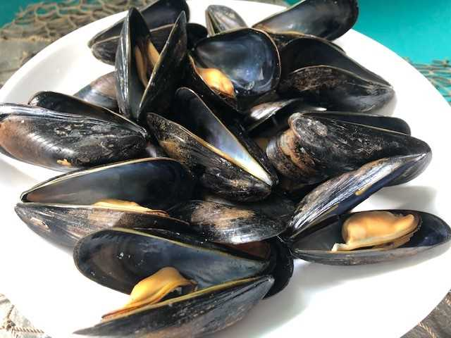 Restaurant Ready® Whitewater Mussel® - 5 lb. bag